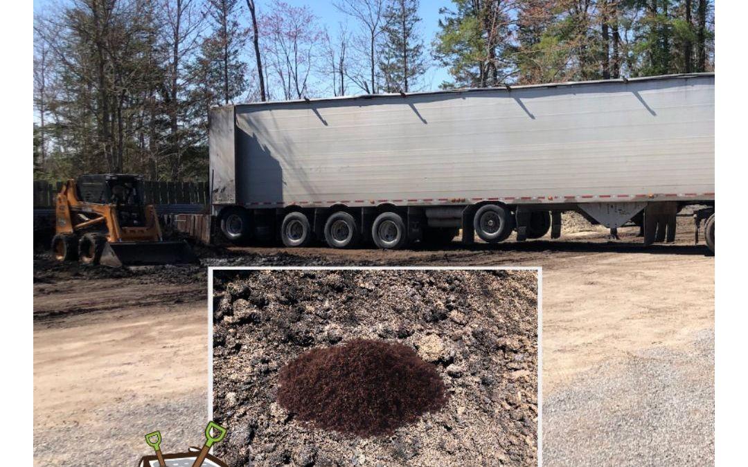 Organic Gardening With Mushroom Compost