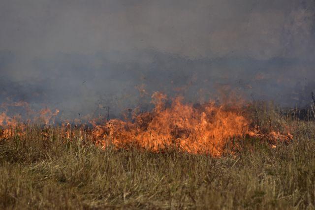 Φωτιά στη Μάνδρα κοντά στα διόδια Ελευσίνας | in.gr