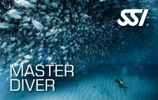 Master Diver brevet