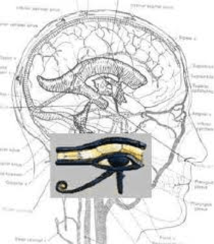Pineal-Horus-2