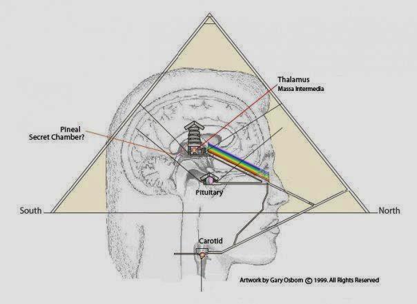 Pineal-pyramid