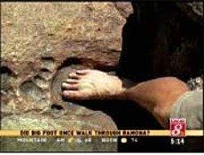 Giant Footprint in Billion-Year-Old Granite