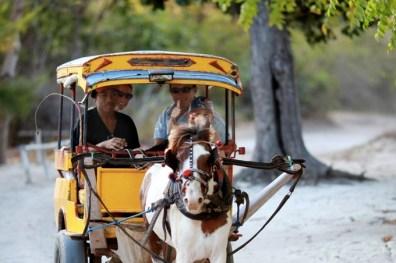 Gili-Meno-in-Bali-8