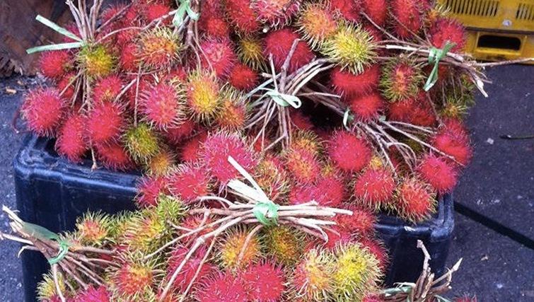 fruit-in-bali