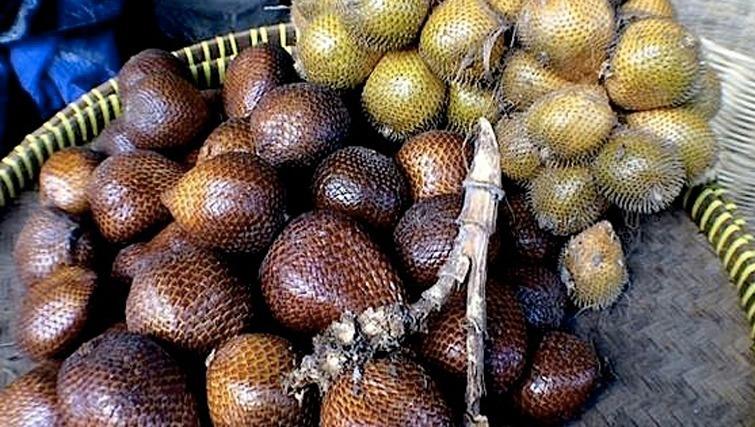 snakeskin-fruit-in-bali