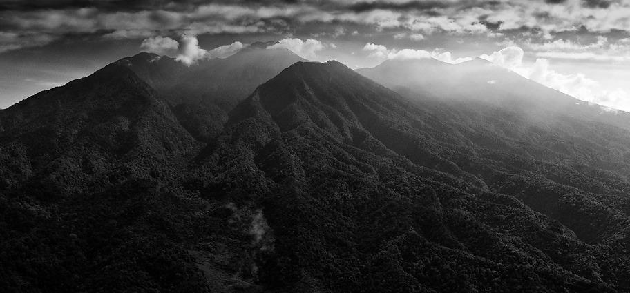 Mt. Gede-Pangrango National Park, West Java, Indonesia