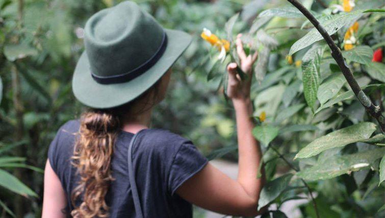 Exploring West Bali National Park