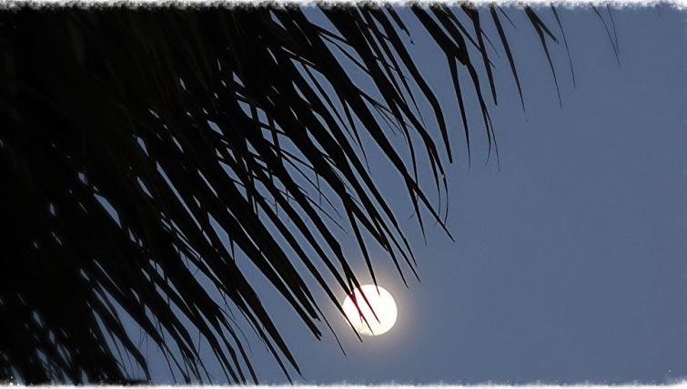 Full Moon. Photo by Farley Roland Endeman