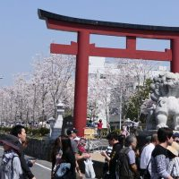 Op-Ed Response to Nikkei Article on Overtourism in Japan
