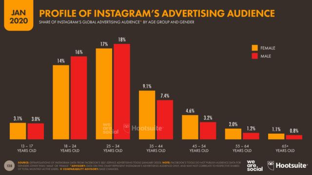 Instagram audience profile