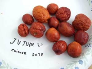 ju-jube-fruits