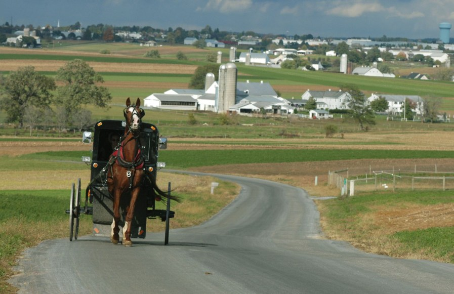 Horse Drawn Buggy in Lancaster