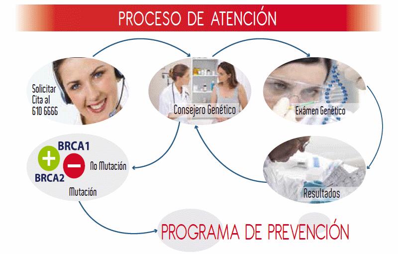 BRCA Proceso de Atención