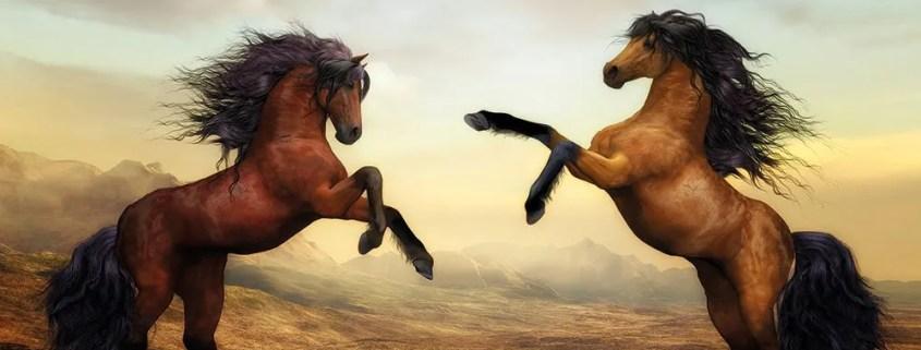 Rüyada At Görmek ; Makam sahibi olmak ve yolculuk anlamına gelir. İş hayatında başarı ve ilim sahibi olmaya işaret eder. Güç, asalet ve kudret demektir. Aynı zamanda pek çok sıkıntıların ve dertlerin sona ereceğine delalet eder. Kişinin iş hayatında yaşanacak olan bolluğa ve berekete rivayet etmektedir.