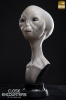 Close Encounters of the Third Kind: Alien visitor 1/1 scale bust