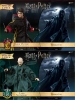 Dementor & Lord Voldermort or Harry Potter 1/8 Pack