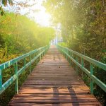 How to Bridge Your Sales and Marketing Teams for Long-Term Corporate Growth