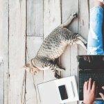 5 Smart Tactics for Skyrocketing Online Sales