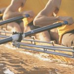 What Rowing Taught This Founder About How to Succeed on a Team