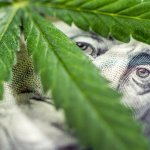 Alaska Credit Union Will Be the First Financial Institution to Serve $55 Billion Cannabis Industry
