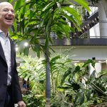 The Incredible Science Behind Why Amazon Filled Its New Office With 40,000 Plants