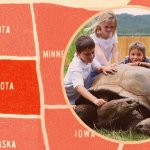 How a $100,000 Tortoise Keeps This Family Business a $4 Million Operation