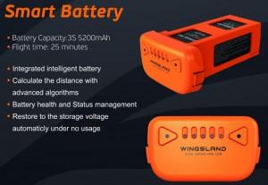 Scarlet Minivet Smart Battery