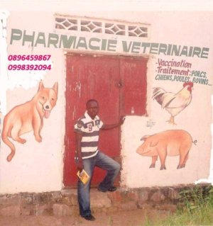 Farmacia veterinaria a Kinshasa web