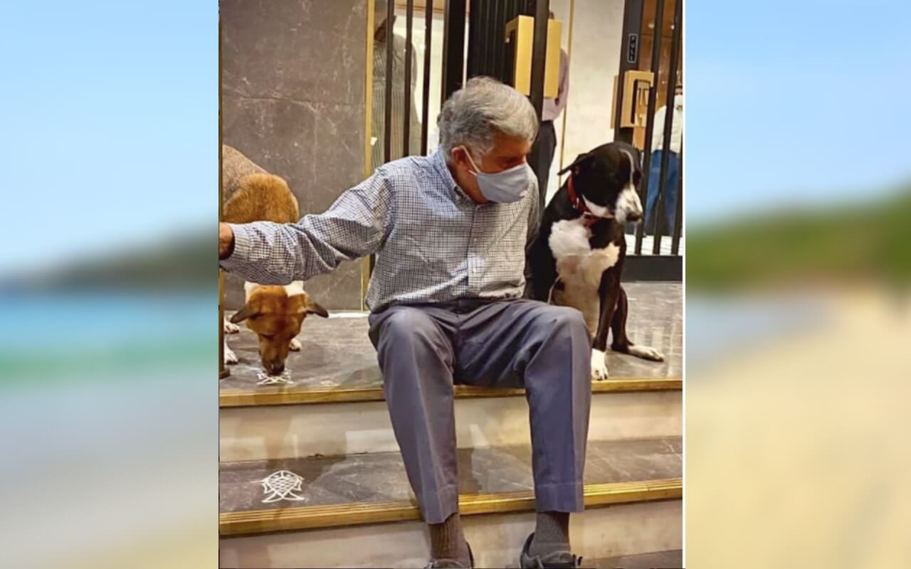 Ratan Tata Had Adopted A Dog and Named It Goa