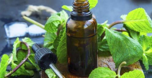 Image result for essential oils handbook: remedies for natural living [book]