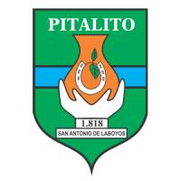 Alcaldía de Pitalito