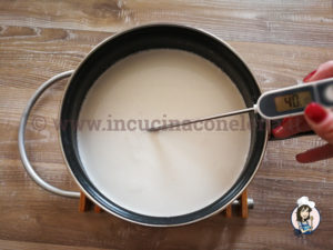 Yogurt di mandorle fatto in casa
