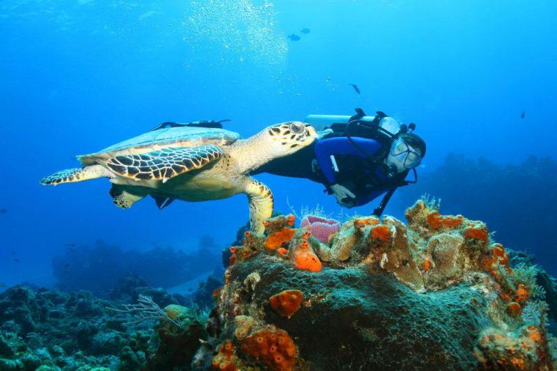 mergulho-cozumel