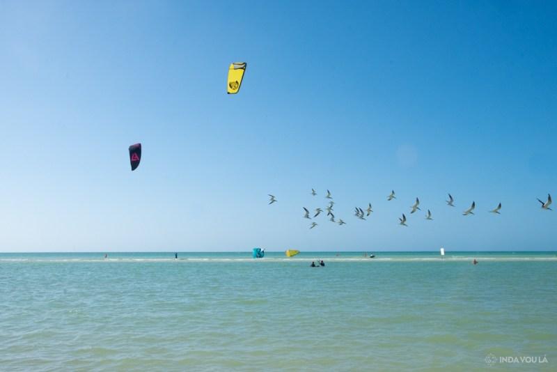 Kite surfing em holbox