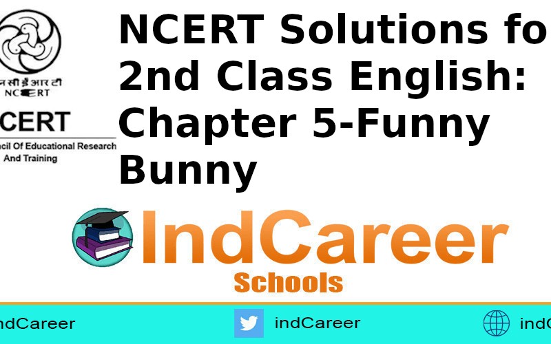 NCERT Solutions for Class 2nd English: Chapter 5-Funny Bunny