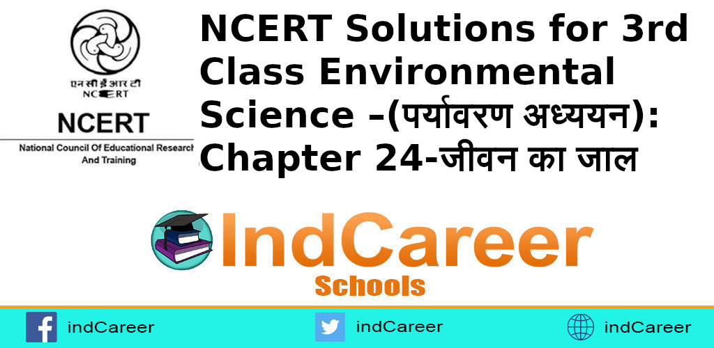 NCERT Solutions for Class 3rd Environmental Science –(पर्यावरण अध्ययन): Chapter 24-जीवन का जाल