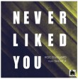 Never Liked You (Feat. Sadat X) - Never Liked You (Feat. Sadat X)