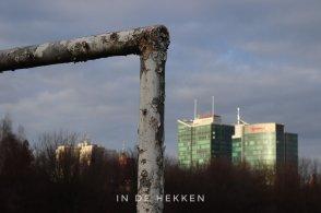 In de Hekken - Poznan