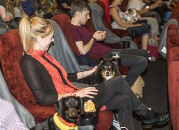 Al cinema accompagnati dai cani