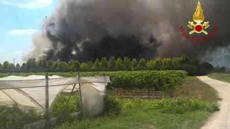 Incendio in allevamento di polli nel padovano: bruciano oltre 200 mila animali