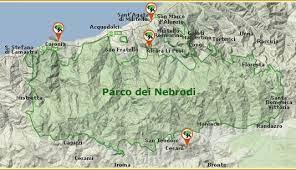Parco dei Nebrodi – Approvato dal Consiglio del Parco il Rendiconto della gestione per l'anno 2020