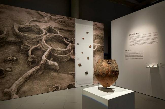 Earliest wine in world found in 8,000-year-old jars in Georgia