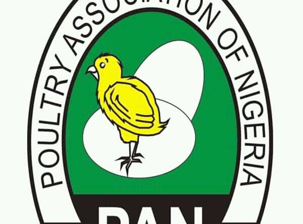 Continued Border Closure: Poultry Farmers Count Gains