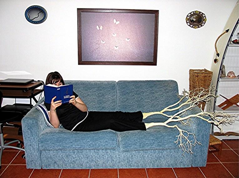 Alberto Magrin, le radici della conoscenza 40x60 cm 2012 fotografia