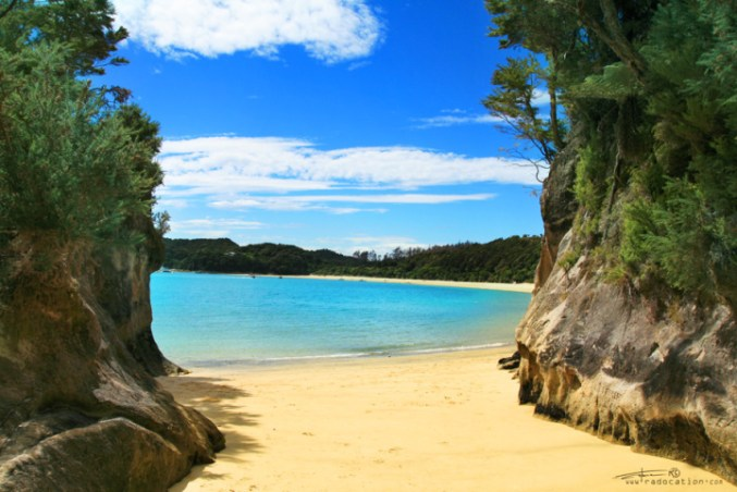 Ultimate Guide To Paradise - Abel Tasman Coast Track