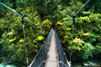 Abel Tasman Coastal Track Bridge