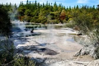 Rotorua, New Zealand, travel, backpacking