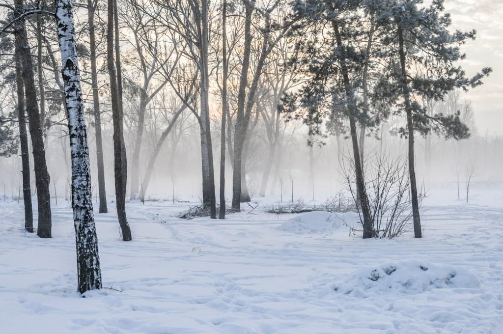 independent people ukraine winter