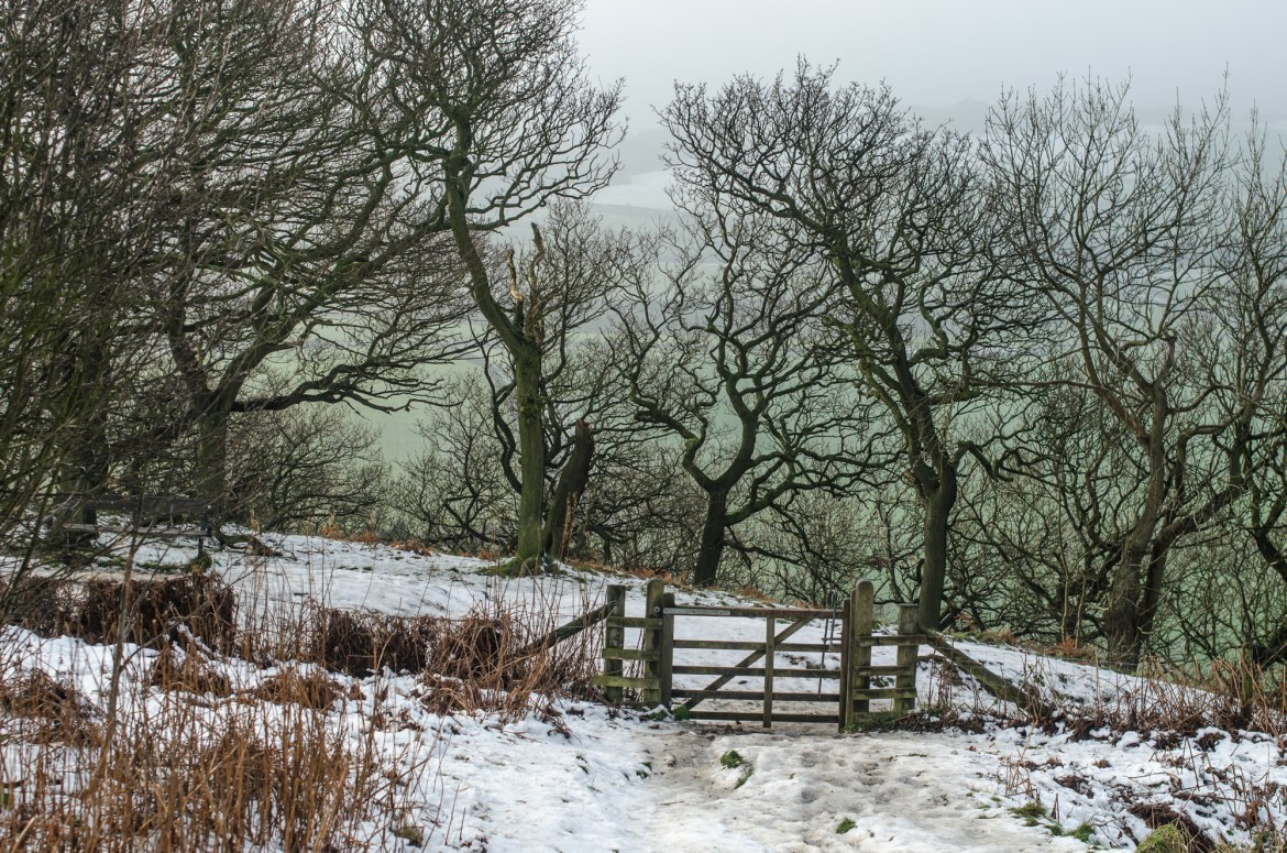 Roseberry Topping in Winter