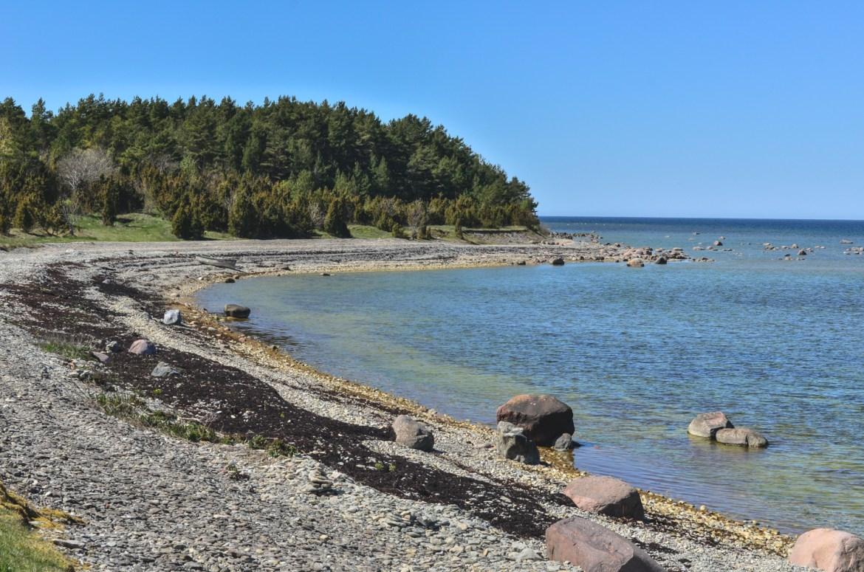 Cycling in Estonian islands, Saaremaa
